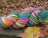 Strong Cheerful Rainbow--4 Ounce Worsted Weight--Wool Mohair blend--Plant Dyed
