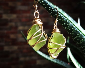 Sea glass wire wrapped earrings with gold wire and gold hooks