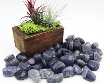 Tumbled Stones By the Ounce - IOLITE - (Aj)