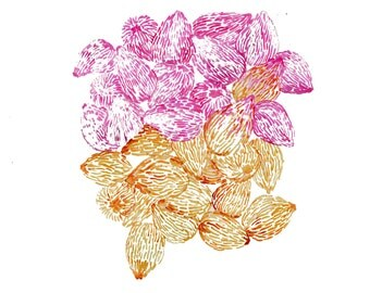 minimalist watercolor print: Figs