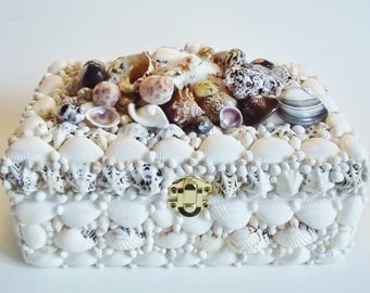 Seashell Box in White, Black and Brown
