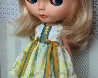 Everyday dress for blythe