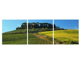TRIPTYCH Fine Art Color Photography of the Tuscany Landscape - Vineyards in Chianti
