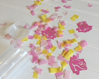 Sleeping Beauty Party Popper - Aurora Party Favor - Sleeping Beauty Birthday - Confetti Popper - Birthday Party Favor