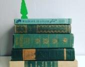 Custom Listing for Erin Instant Library Decorative Book Stack  Books for Wedding, Bookshelves , Display Etc