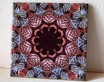 Ceramic tile | Cones and needles mandala | ONE decorative wall tile, kaleidoscope, evergreen, brown, tan, teal, garden decor 541