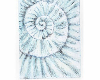 Original ammonite fossil zinc etching no.93 with mixed media jurassic Dorset coast fossil spiral fossil ammonites golden section