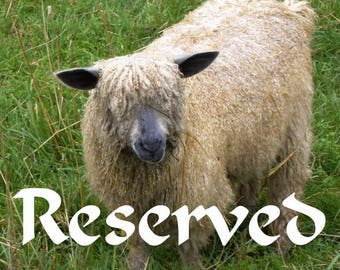 RESERVED for Marian, Handspun yarn from my East Frisean milk sheep - 5.2 oz, 131 yards
