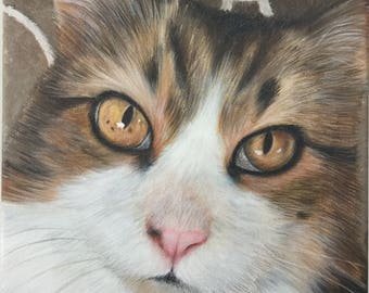 Custom tabby cat portrait painting Hand painted on stretched canvas
