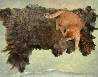 Cruelty Free,  Karakul Shetland, Cat Bed, Dog Mat, Pet Bed, Humane SheepSkin, Felted Wool Fleece, Cat Lover Gift, Rustic Decor,Ready to Ship