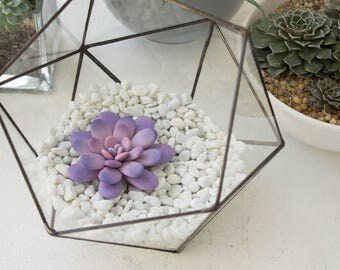 Purple Pink Succulent Fairy Garden in Cup Ideas Polymer Clay Succulent Home House Decor Decoration Modern Minimalist Home Style Housewarming