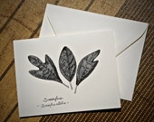 5-Notecard Set: Sassafras Leaf