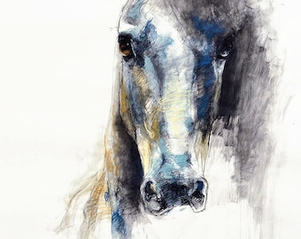 "24""x35"" - High Quality Photo print of a Horse Head Drawing"