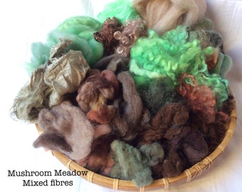 Dyed British Rare Breeds & Mixed Fibres for Blending. 150gms. Spinning, Felting supply.Shetland, Teeswater, silk. 'Mushroom Meadow' colours