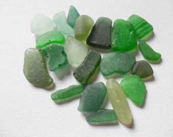 20 Green Scottish and English sea glass.