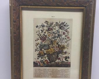 May Botanical framed print Cape Craftsmen, Inc  Robert Furber Gardiner at Kennsington Collection 1730