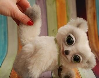Alfonso, the polar fox
