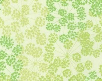 "108"" WIDEBACK - Kaufman - Valori Wells - Blueprint Basics Wide - Leaf"