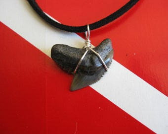 """Shark Tooth Necklace, Tiger Shark fossil, Peace River system-Florida, 20"""" Suede cord, Silver plated wire wrap"""