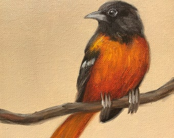 Original Oil Painting Little Baltimore Oriole