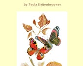 Paula's Art and Nature Book; Birds, Butterflies, Fish and Botany; the Beautiful Natural World, A Very Special Gift, An Artist Portfolio, Art