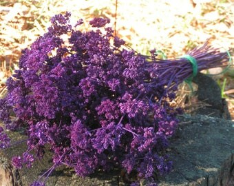 Plum Purple Oregano Flowers***50 Strong Stems***Garden Grown & Air Dried***Wedding Bouquets and Home Decorations, Crafts, Wreaths, Baskets