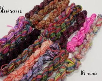 Blossom - 16 Sock Yarn Miniskeins, 12 yds each, 192 yds total