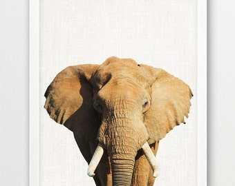 Elephant Print, Africa Safari Animals, Elephant photography, Nursery Animals Photo Wall Art, Kids Room Wall Home Decor, DIY Printable Art