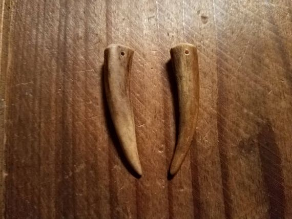 "Drilled Shed Deer Antler Tips 1-3/4"" Earrings Ready ..."