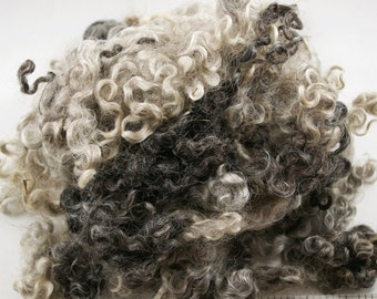 Lincoln Longwool Locks, Washed, 2oz