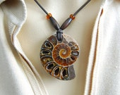 FOSSIL AMMONITE Pendant-from Madagascar- very,VERY cool !