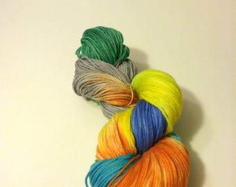 Hand Dyed 75/25% SW Merino Wool/Nylon DK/Light Worsted Weight Yarn - 'Parokeet'
