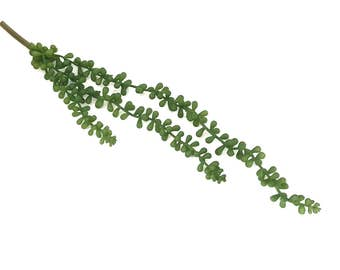 Faux String of Pearls Succulent, 18 inch Artificial Succulent Pick, Realistic Fake Succulents, DIY Floral Arranging Supply
