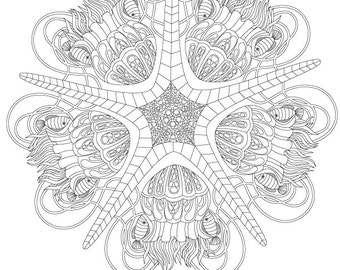 Star coloring page Etsy