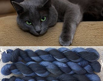 Russian Blue 100g, cat theme merino nylon blend indie dyed sock yarn