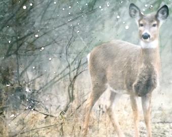 Hiding Places - Deer Encaustic, Deer Art, Deer Decor, Animal Encaustic, Animal art, Woodland Decor, Nature Encaustic, Nature , Deer Painting