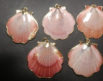 Vintage gold edged Pink Scallop Shells pendants. (1060453)
