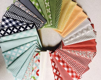 Bonnie Camille Basic fat quarter bundle (35)