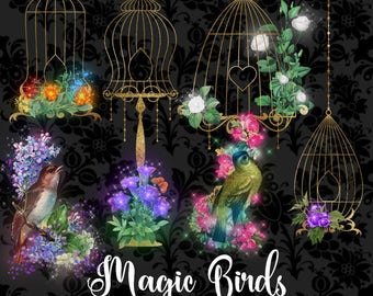 Magic Birds Clipart, fantasy sparkle bird cages clip art, wedding floral gold glitter fairytale vintage illustrations, fantasy graphics