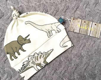 READY TO SHIP dinosaur baby hat, newborn hat, organic baby clothes, baby girl hat, baby boy hat, baby clothes, newborn gift, newborn hat