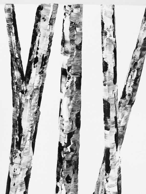 white paper birch tree for sale