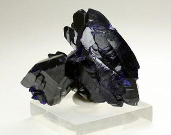 Stunning Milpillas Mine Azurite Crystal Cluster