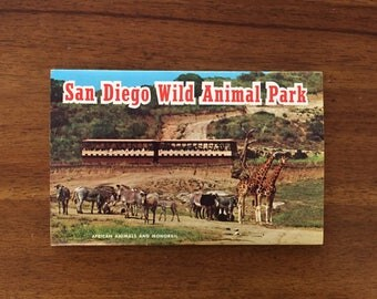 1960's San Diego Zoo Postcard Book/ 6 Double-Sided Photos/ Unused!!!