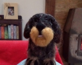 Miniature, needle felted rough coated dachshund