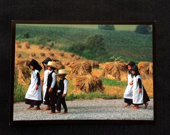 Walking to Church - Ohio's Amish Country Postcard - Vintage 1996 - Doyle Yoder -Amish Comumity Life - Never Used - Excellent Condition