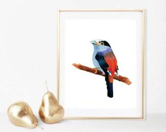 Bird Wall Print,Silver Breasted BroadBill Watercolor,Bird Decor Prints,Watercolor Decor, Silver,Blue,Red,Bird Watercolor Printables,Decor