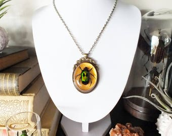 Bronze coloured pendant with beetle