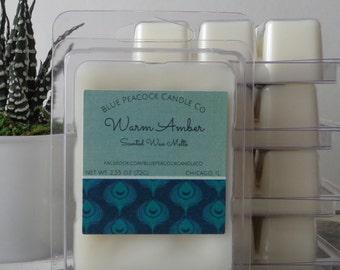Wax Melts ~ Amber Wax Melt ~ Wax Tarts ~ Candle Melts ~ Scented Wax Cubes ~ Warm Amber Wax Tart ~ Home Fragrance