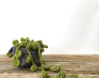 Crochet Succulent Hanging Plant - string of pearls in felt pouch.