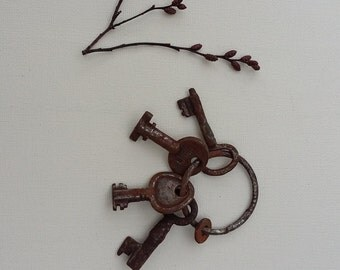 Vintage Rusty Edwardian Keys Miniature Keys